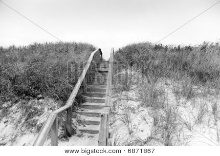 Stairs Over The Dunes