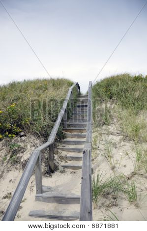 Steps Over The Dunes