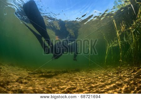Underwater shot of the spearfisher moving in the reed