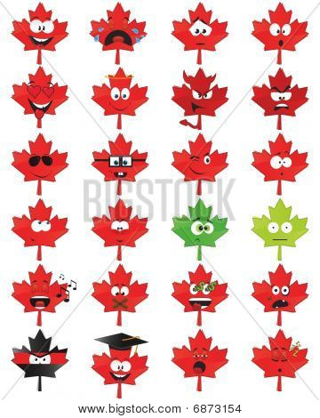 Maple-leaf-shaped smiles