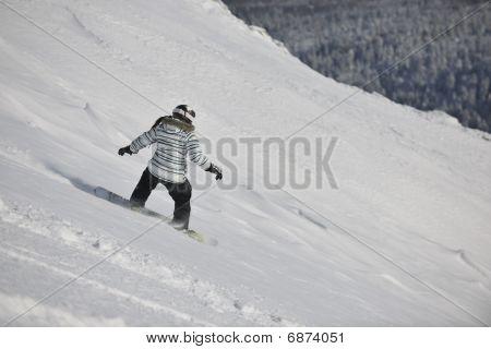 Snowboard Woman
