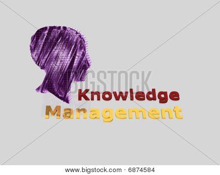 Knowledge Management - 3D