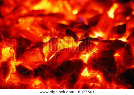 Live Coals In The Oven