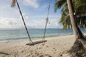 Rope swing on beach; Koh Pha Ngan; Thailand poster