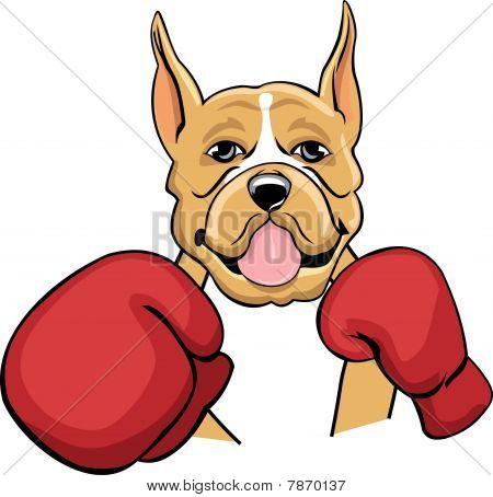 Boxing Boxer Cartoon