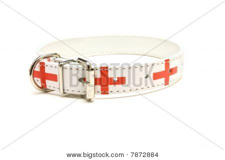 England supporter Dog Collar from low viewpoint isolated against white background. poster