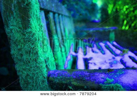 a mossy bench in the winter