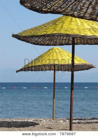 yellow sun umbrellas