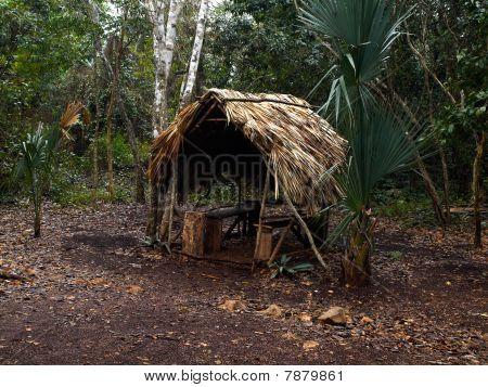 Hut In Jung