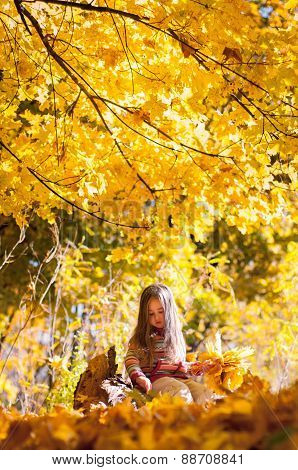 Little girl sitting on a log in the autumn park