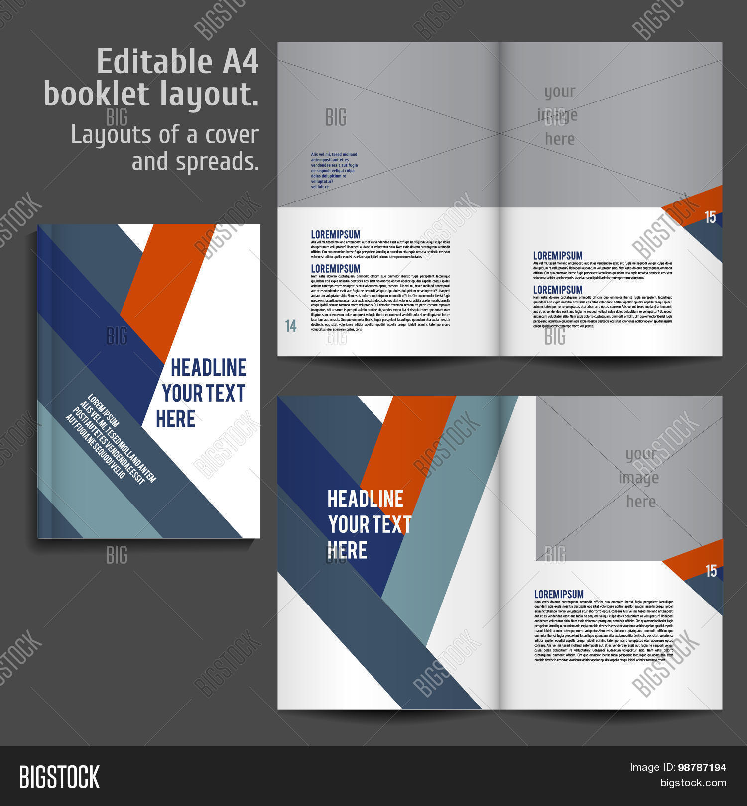 A4 Book Layout Design Vector & Photo (Free Trial) | Bigstock