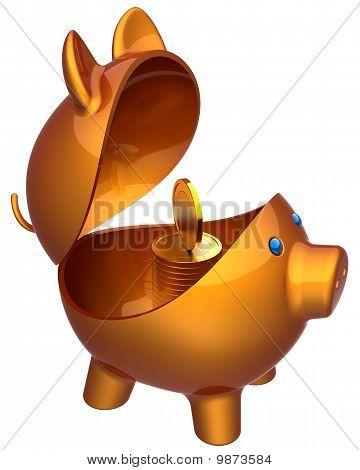 Inside piggy bank