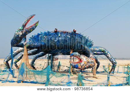 The Mad Crab Of Kochi