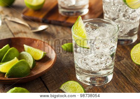 Alcoholic Gin And Tonic