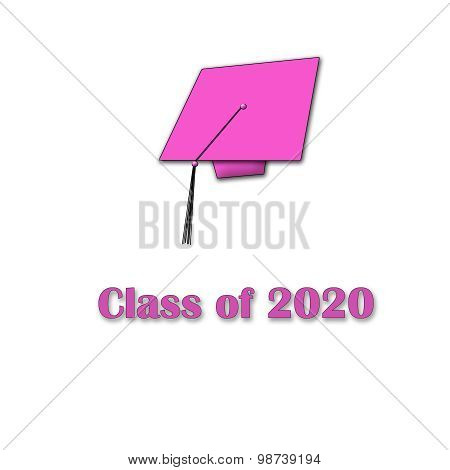 Class of 2020 Pink on White Single Large