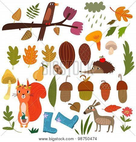 Vector Set Of Cartoon Forest Animals And Autumn Elements- Stock Vector