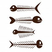 set of vector fish skeleton - brown on the white background poster