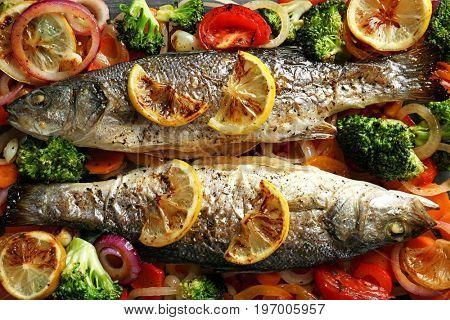 Two tasty baked sea bass fish with garnish, closeup