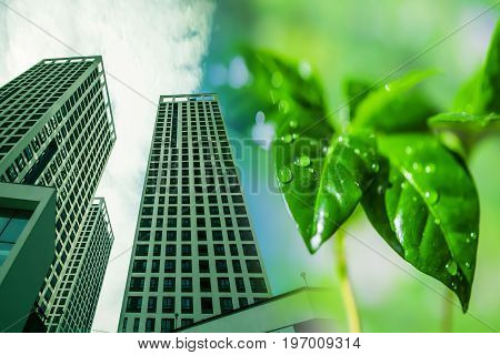 Modern skyscraper on a background of green plants . The concept of environmental clean construction .