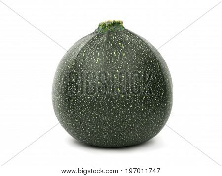 A single dark green zucchini isolated over the white background. A close-up picture of a tropical and tasteful zucchini. Nutritious and juicy vegetables for healthy salads and diets.