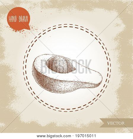 Hand drawn sketch half of avocado fruit. Eco food vector illustration isolated on vintage background.