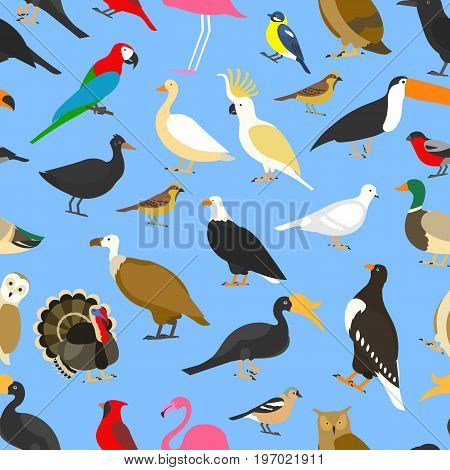 big set of tropical, domestic and other birds, cardinal, flamingo, owls, eagles, bald, sea, parrot, goose. raven. sparrow chicken turkey toco toucan hornbill griffon duck Seamless pattern