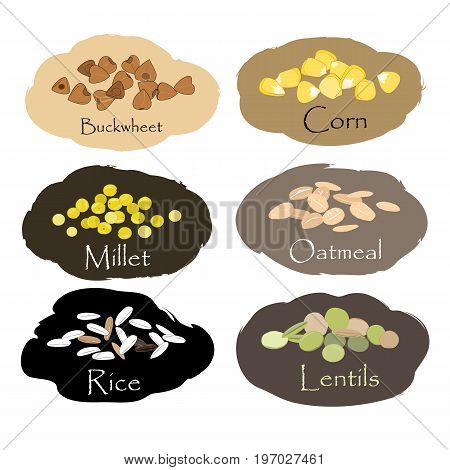 Vector set of cereal and grain emblems. For packing groats, kitchen jar prints, advertising healthy food. Buckwheet, millet, corn, rice, lentils, and oatmeal
