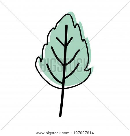 watercolor silhouette of small lobed leaf plant vector illustration