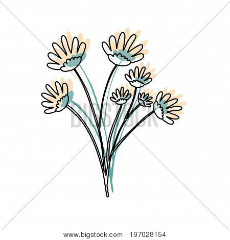 watercolor silhouette of hand drawing yellow daisy flower bouquet with several ramifications vector illustration