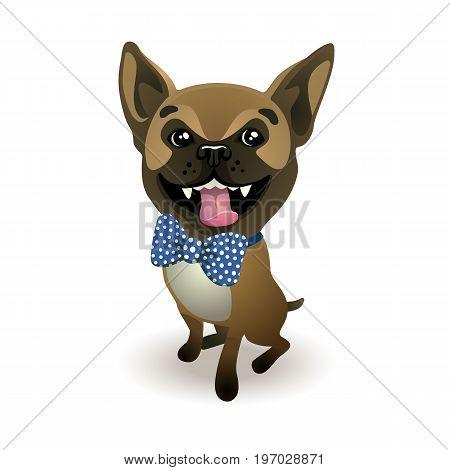Dog breed French bulldog. beige french bulldog dressed in a Blue bow. Vector illustration
