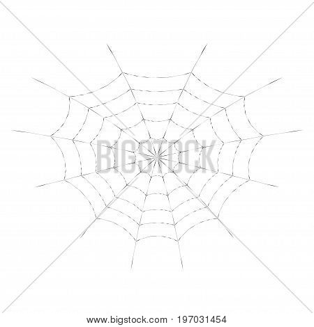 Spider web for Halloween design or t-shirt print. Cobweb. Isolated on white background. Vector illustration.
