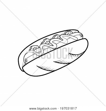 Hot dog hand drawn illustration. Fast food design elements, sketch of hotdog with sauce
