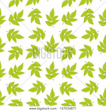 Seamless pattern with green leaves on white background. Vector texture with fresh foliage.