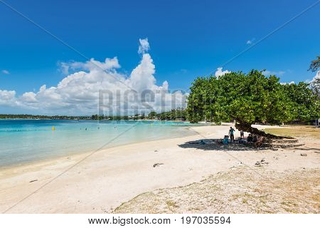 Blue Bay Mauritius - December 28 2015: People relaxing in the shade of a tree on the Blue Bay beach Mauritius Indian Ocean.