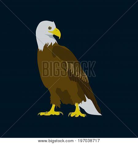 Vector illustration in flat style eagle bird