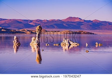 The magic Mono Lake. Bizarre calcareous tufa formation on the smooth water of the lake.