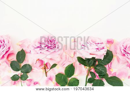 Floral composition. Frame of pink roses and petals on white background. Flat lay, top view