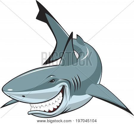 Vector illustration, toothy smiling white shark swims