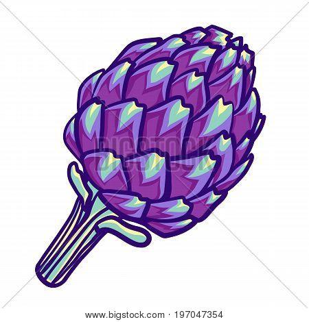 Artichoke violet flower head isolated on white. Decorative image of purple Roman artichoke. Artichoke flower. Vector illusteation