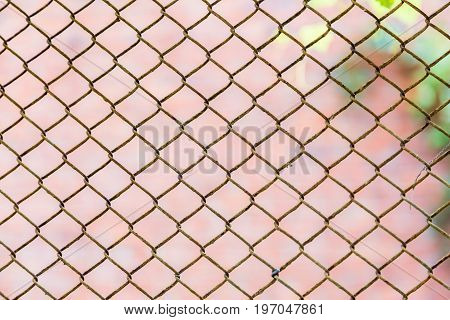 Mesh netting and blurred the back . Textured background