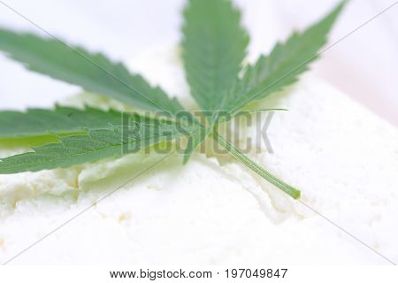 Fresh grass canabis leaves for salad preparation