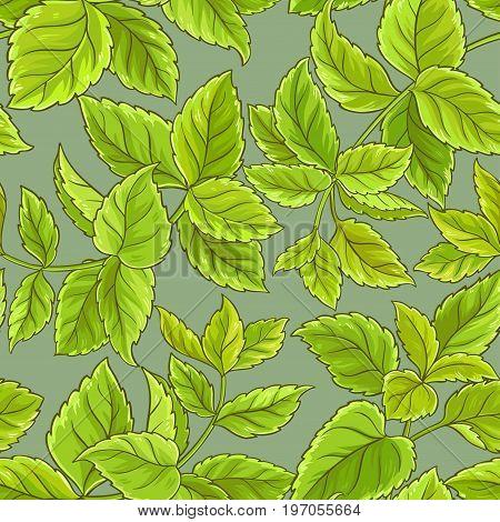 melissa leaves vector pattern on color background