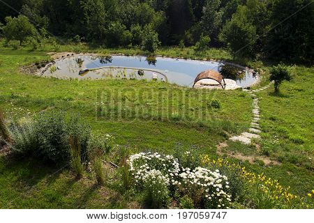 Wooden Pier At Natural Swimming Pond Purifying Water Plants