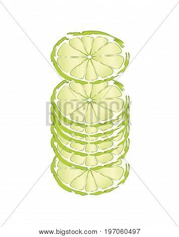 Slices of green lime on white background