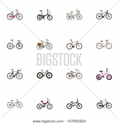 Realistic Timbered, Brand , Hybrid Velocipede Vector Elements