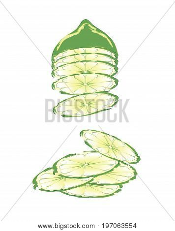 Slices of green lime piling up on white background