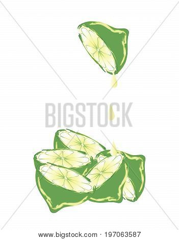 Abstract green lime cut in halves isolated