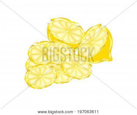 Slices of lemon in cross section isolated