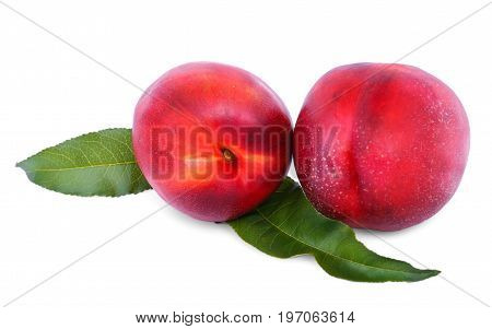 Close-up of the whole fresh red nectarines with green leaves. Ripe, bright, refreshing fruits, isolated over a white background. Summer fruits.