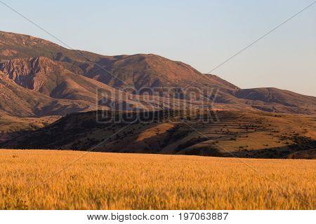 Beautiful mountains of the Tien Shan range in Kazakhstan .